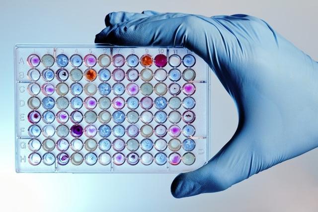 Биотехнологии помогут хранить огромные объёмы данных в течение тысячи лет